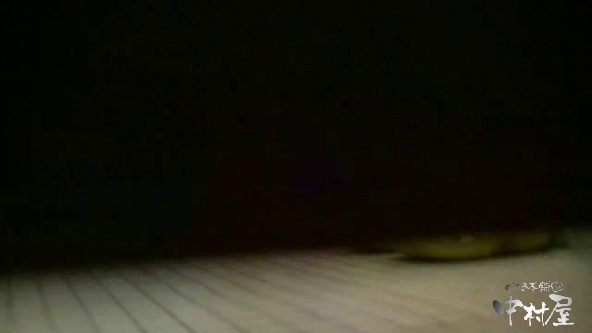 始動します‼雅さんの独断と偏見で集めたVIP限定 動画集Vol.2 期間限定 | 0  90PIX 15