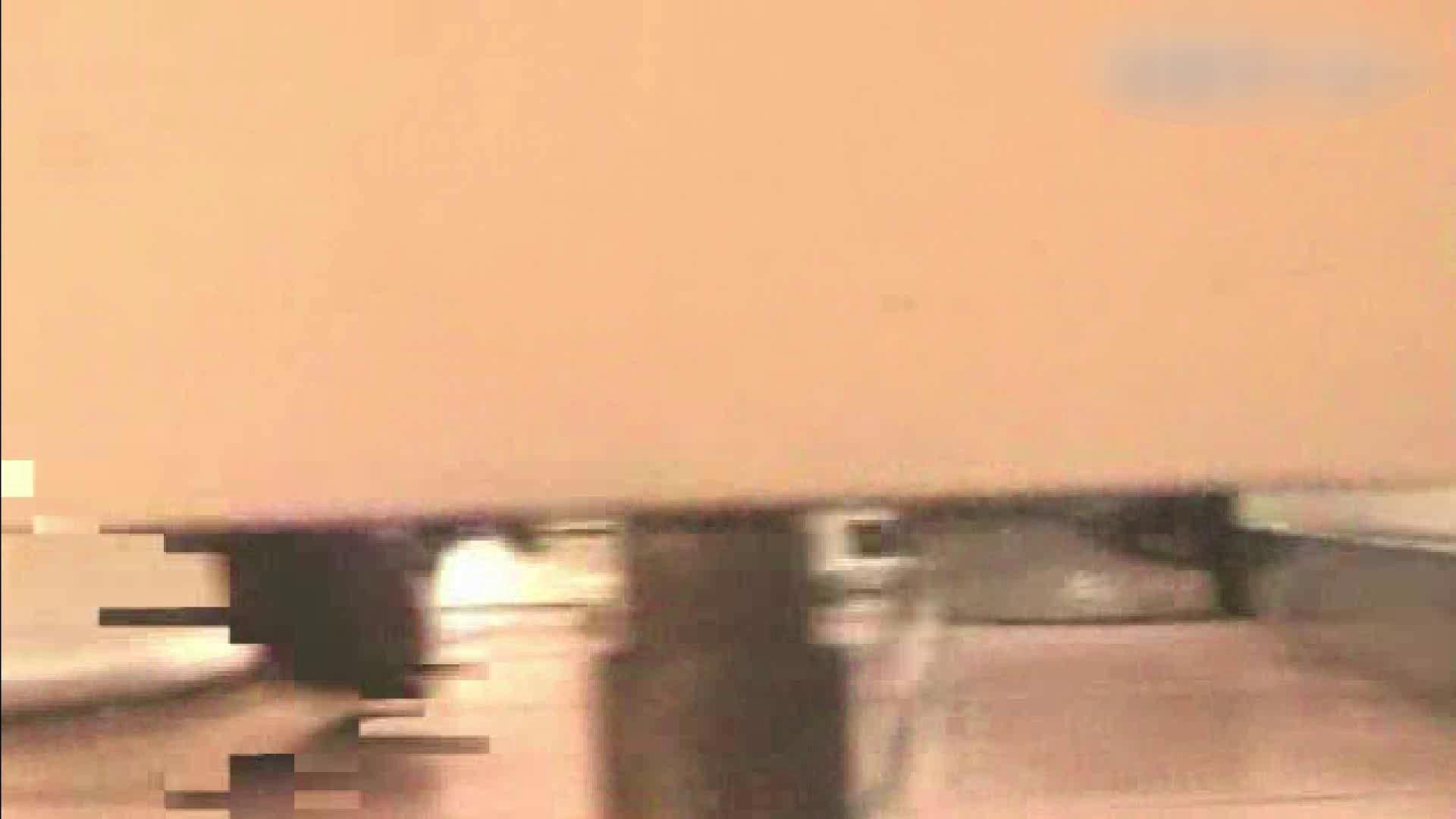 ロックハンドさんの盗撮記録File.03 厠・・・ オメコ動画キャプチャ 91PIX 60