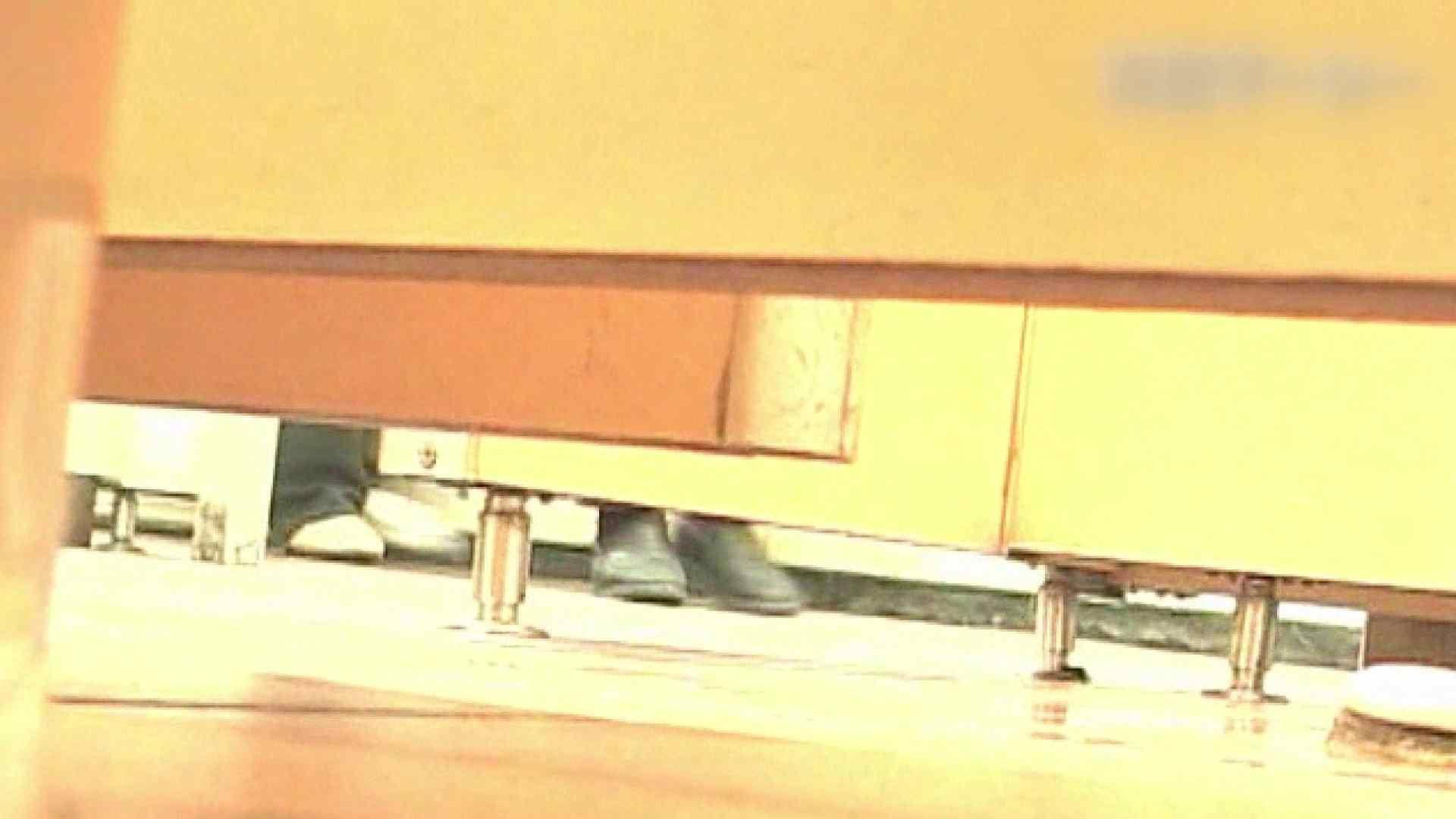 ロックハンドさんの盗撮記録File.26 厠・・・ ワレメ無修正動画無料 102PIX 92