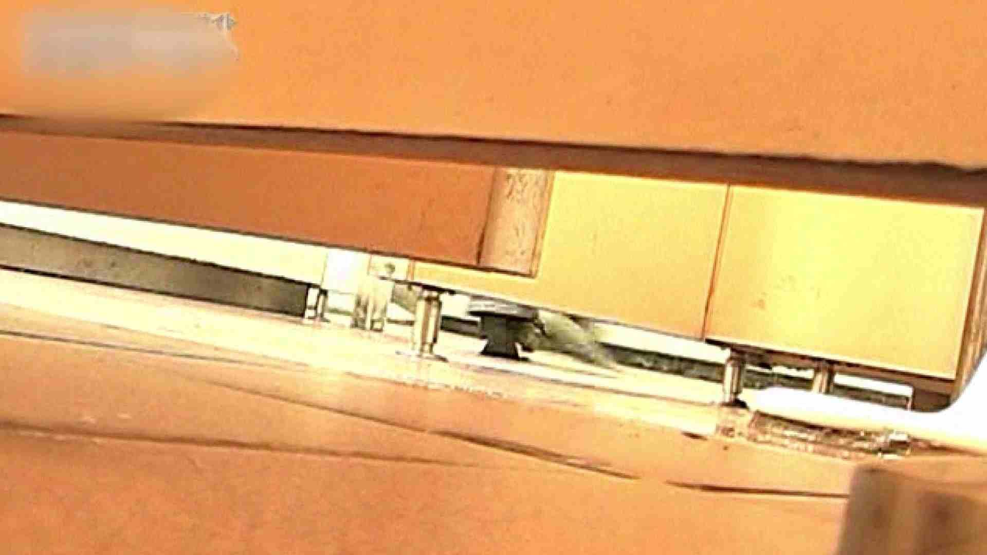 ロックハンドさんの盗撮記録File.54 厠・・・ ワレメ動画紹介 92PIX 85