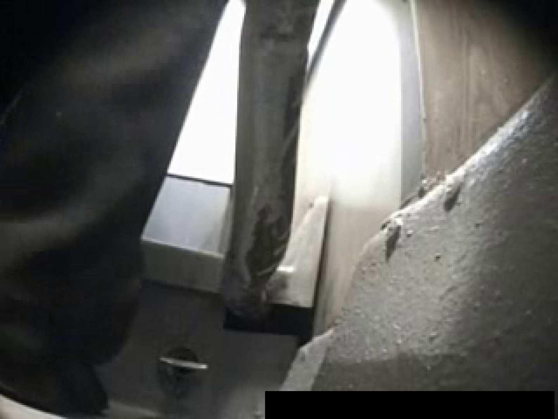 洋物覗き 厠編 vol.8 放尿編 のぞき動画キャプチャ 90PIX 37