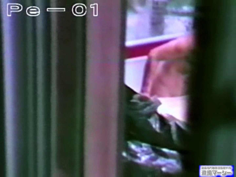 丸秘盗撮 隣の民家vol.1 盗撮シリーズ おまんこ動画流出 78PIX 11