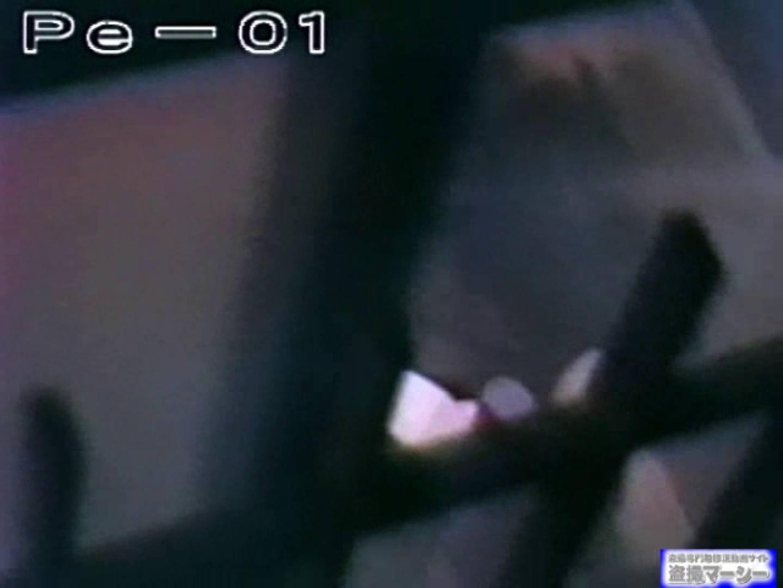 丸秘盗撮 隣の民家vol.1 盗撮シリーズ おまんこ動画流出 78PIX 20