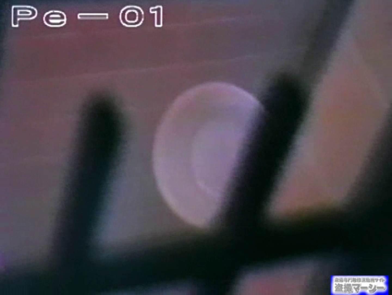 丸秘盗撮 隣の民家vol.1 追跡  78PIX 72