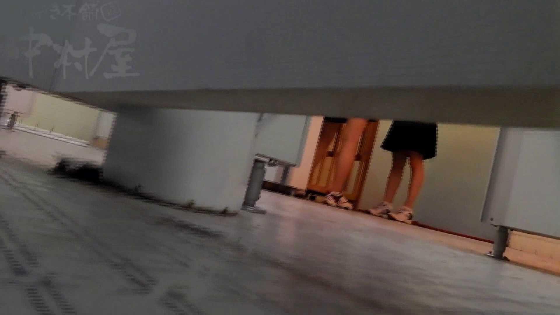 第三体育館潜入撮File024 最後の子公開残りは、SEIJUKU!! 女子トイレ編 アダルト動画キャプチャ 84PIX 9
