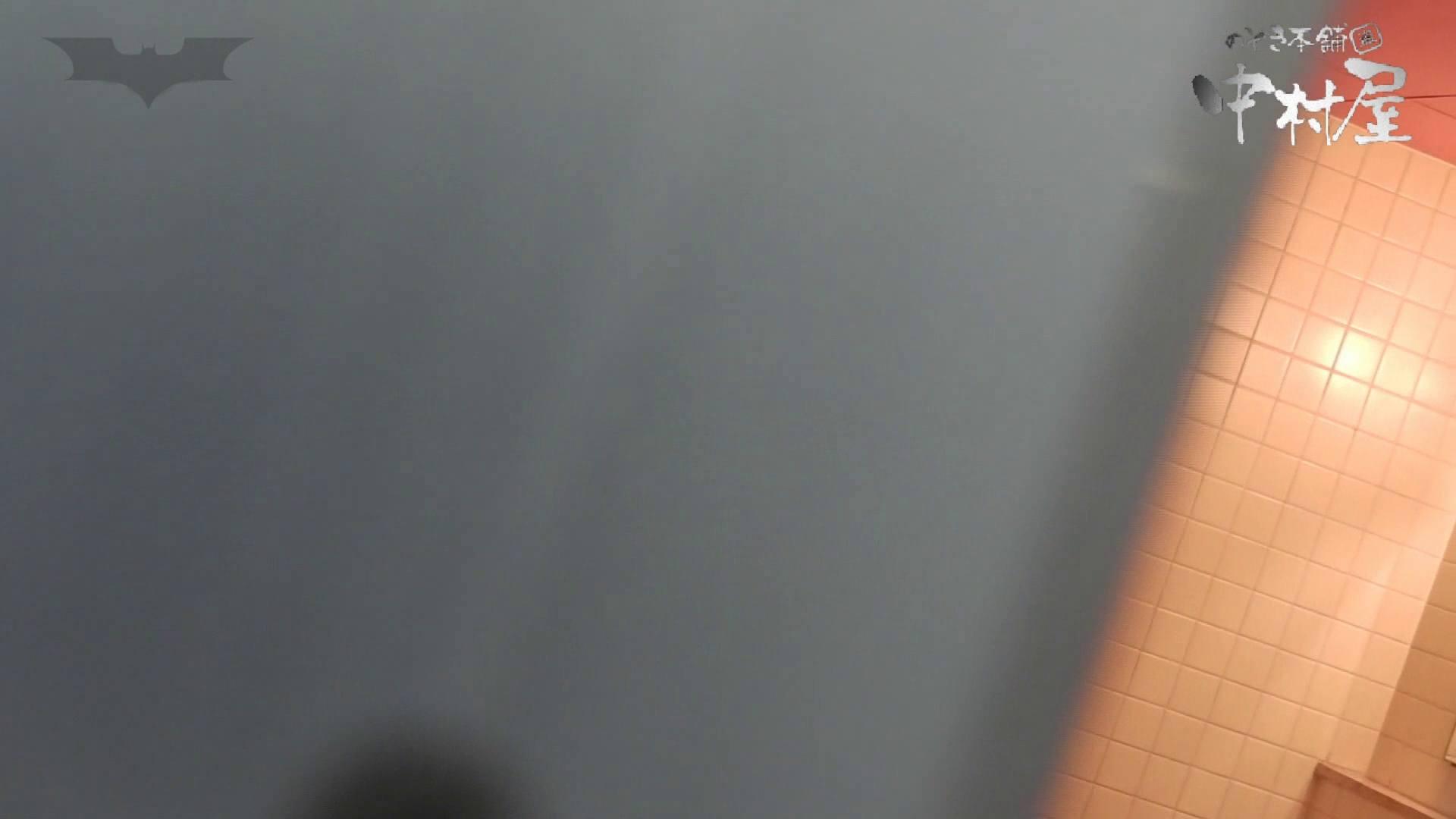 第三体育館潜入撮】第三体育館潜入撮File028 熟女特集!! 排泄編 われめAV動画紹介 101PIX 68