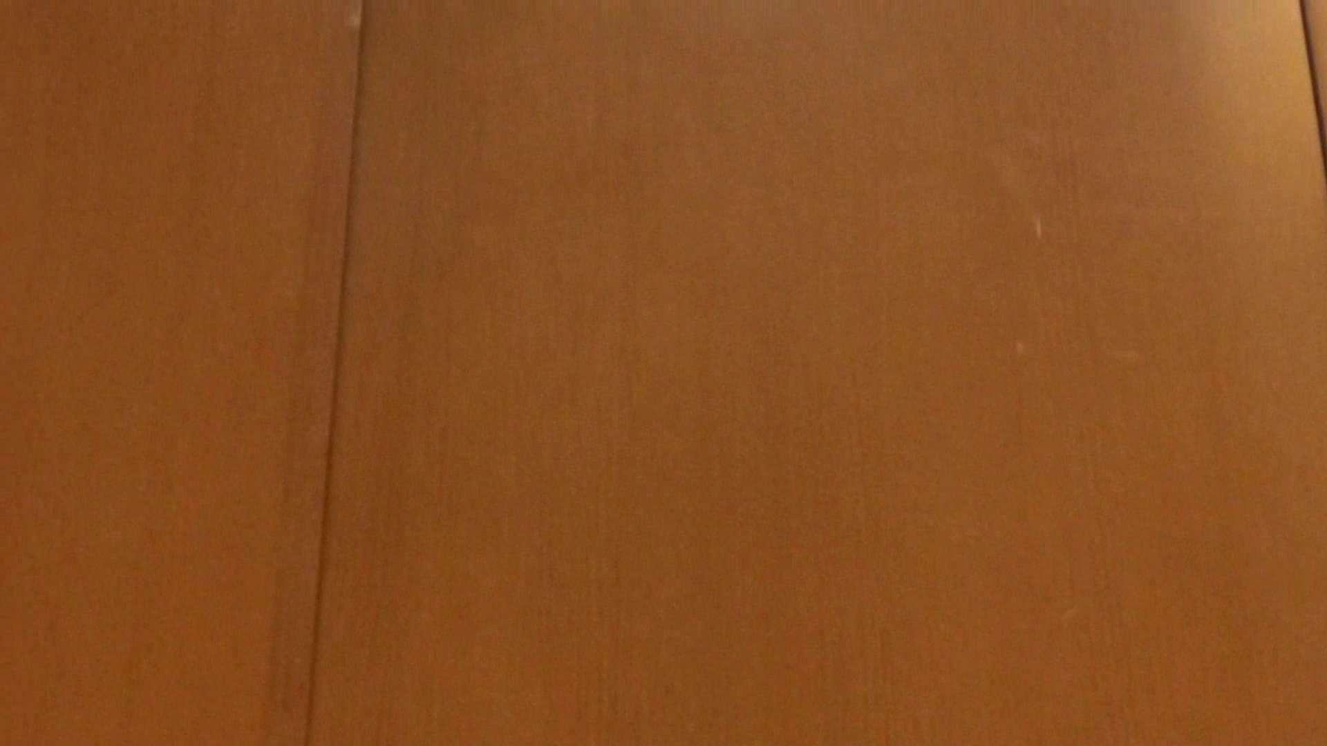 「噂」の国の厠観察日記2 Vol.01 人気シリーズ  89PIX 70