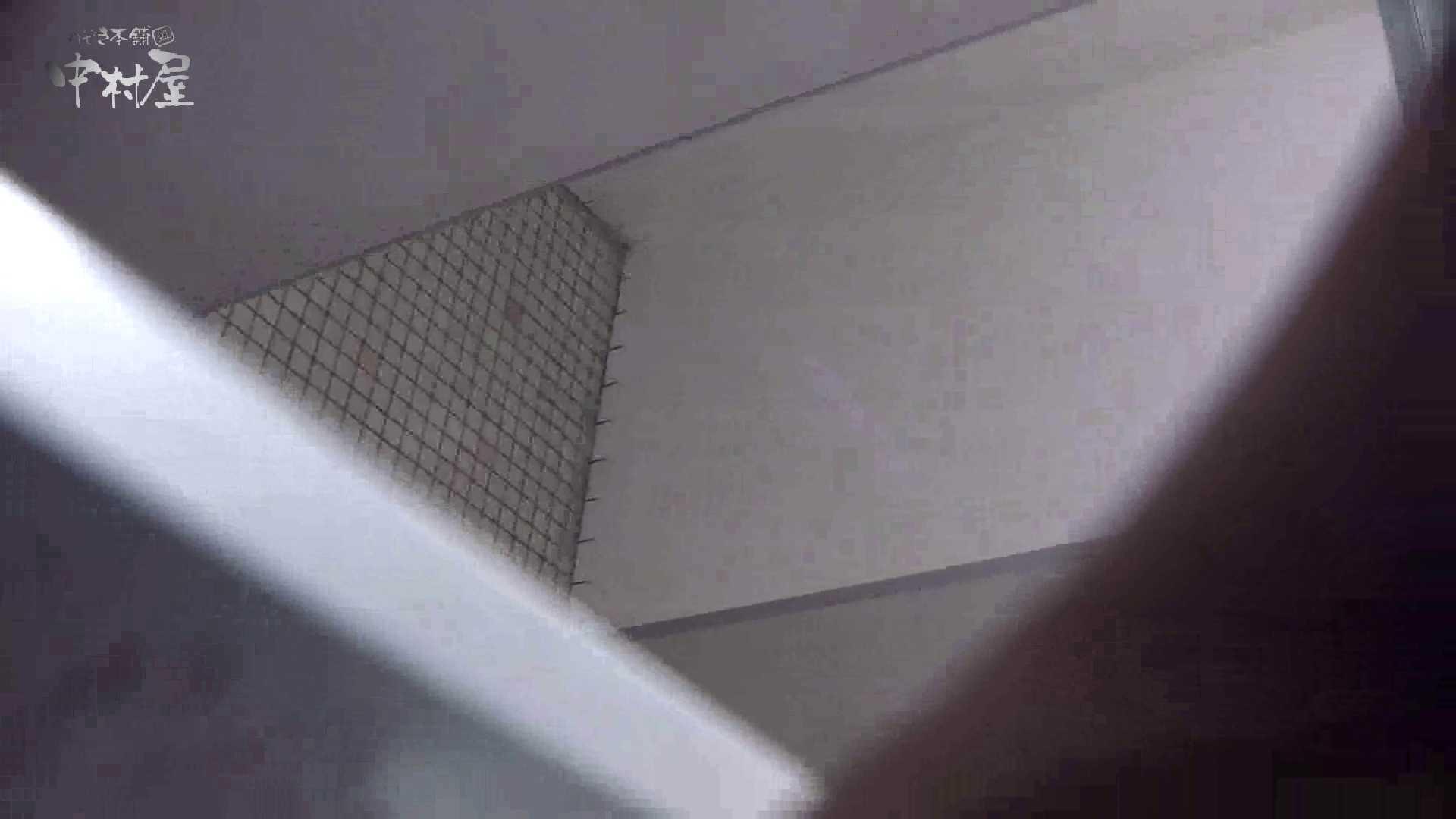洗面所突入レポート!!vol.7 女子トイレ編   乙女のエロ動画  113PIX 10
