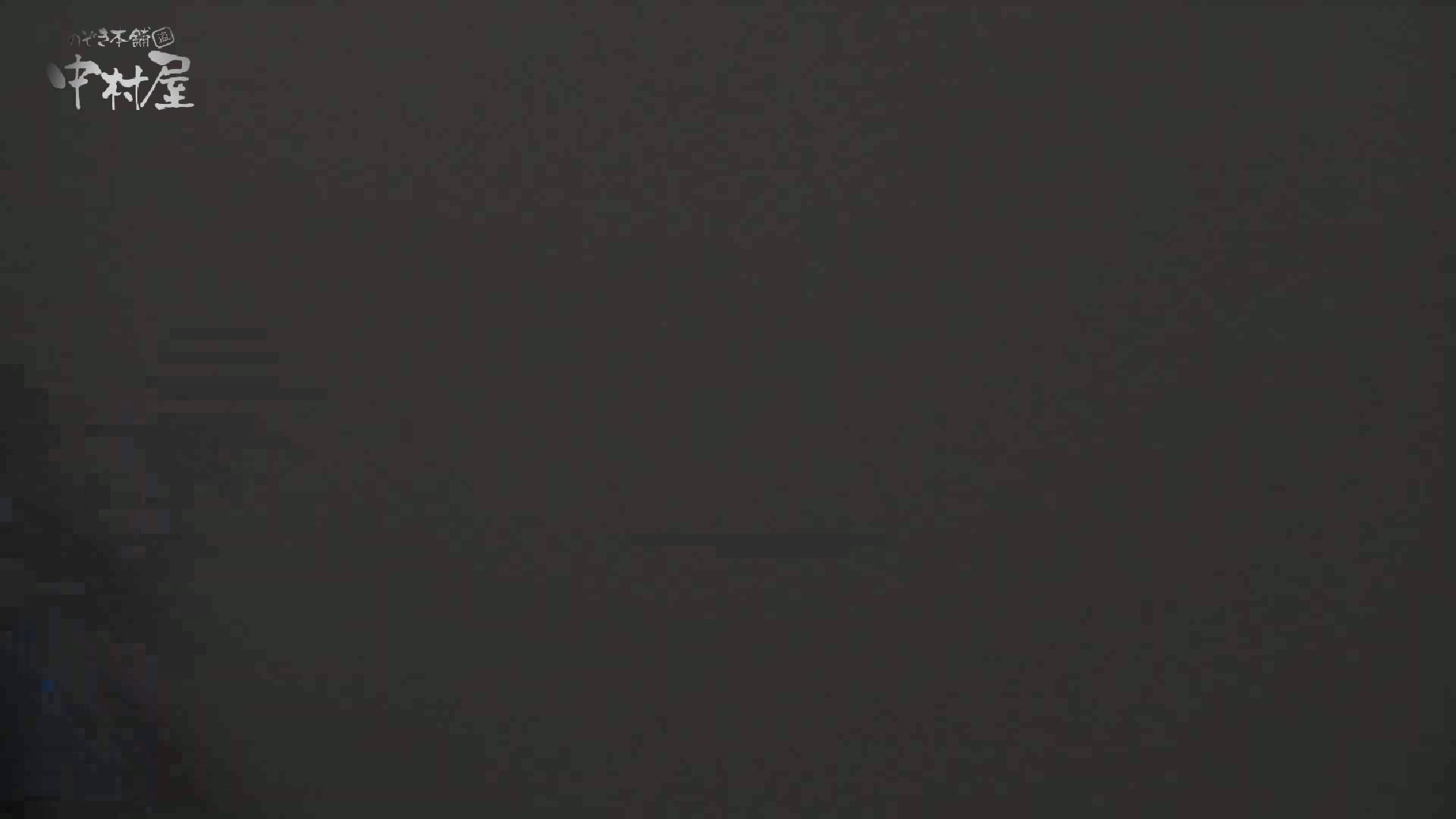 洗面所突入レポート!!vol.13 排泄編 オマンコ無修正動画無料 97PIX 24