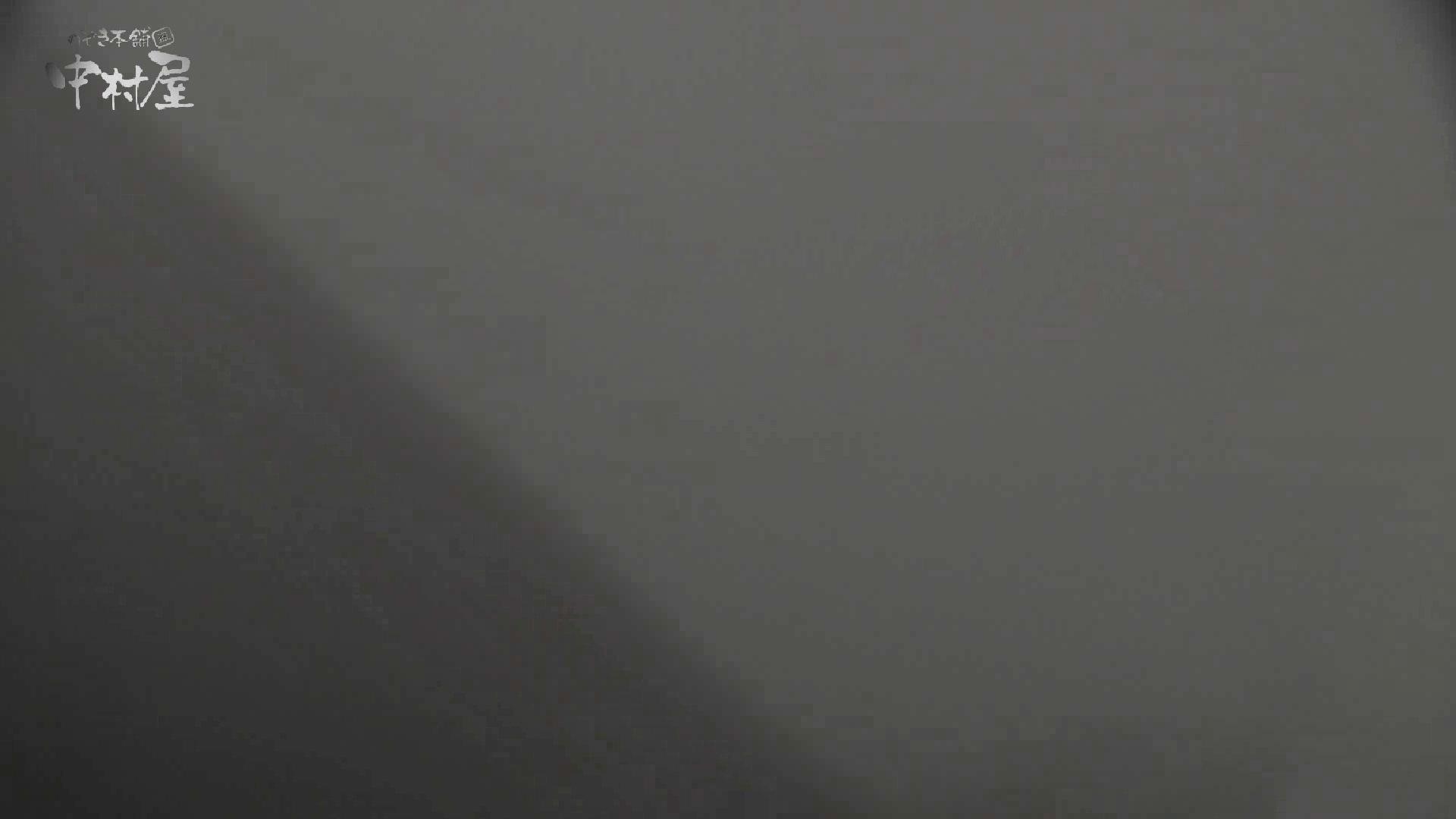 洗面所突入レポート!!vol.13 排泄編 オマンコ無修正動画無料 97PIX 51