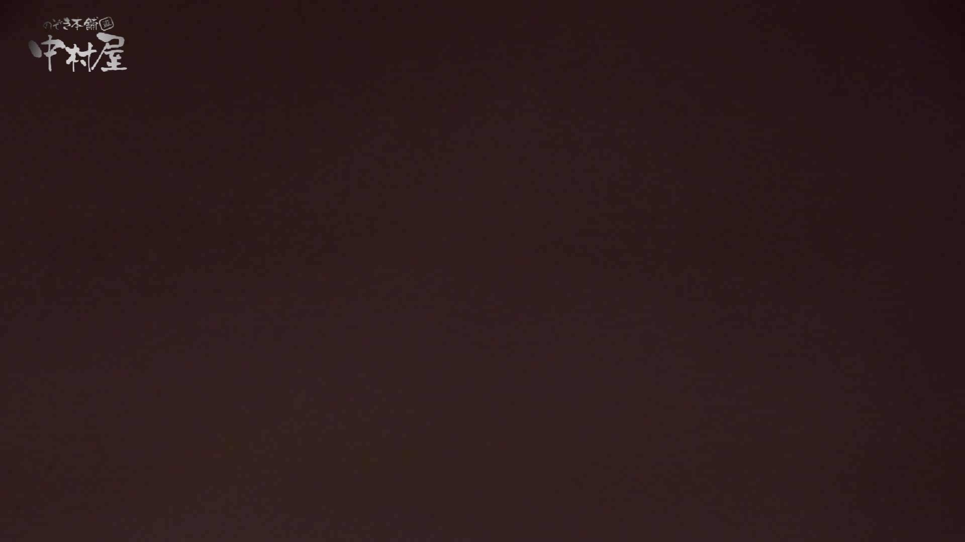 洗面所突入レポート!!vol.17 女子トイレ編 ワレメ動画紹介 83PIX 8