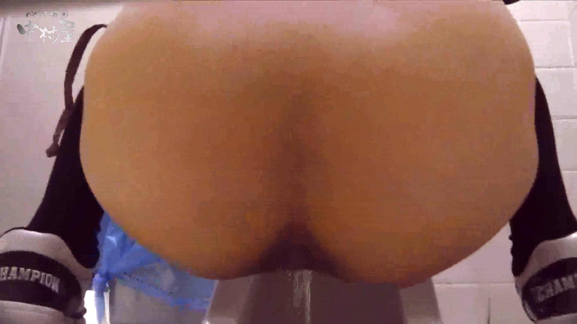 洗面所突入レポート!!vol.17 美女まとめ ぱこり動画紹介 83PIX 67