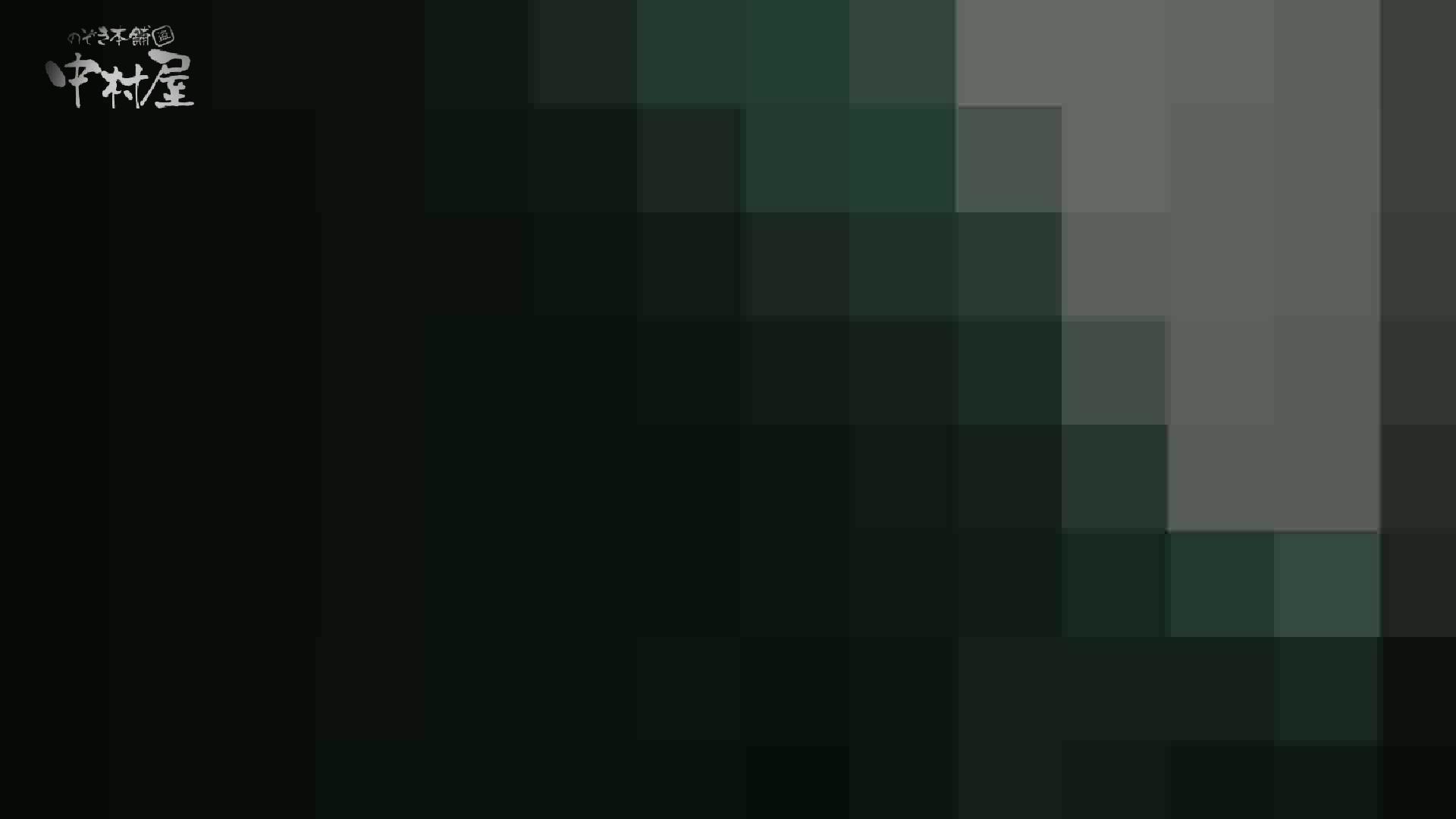 洗面所突入レポート!!vol.26 洗面所編 オマンコ動画キャプチャ 101PIX 13