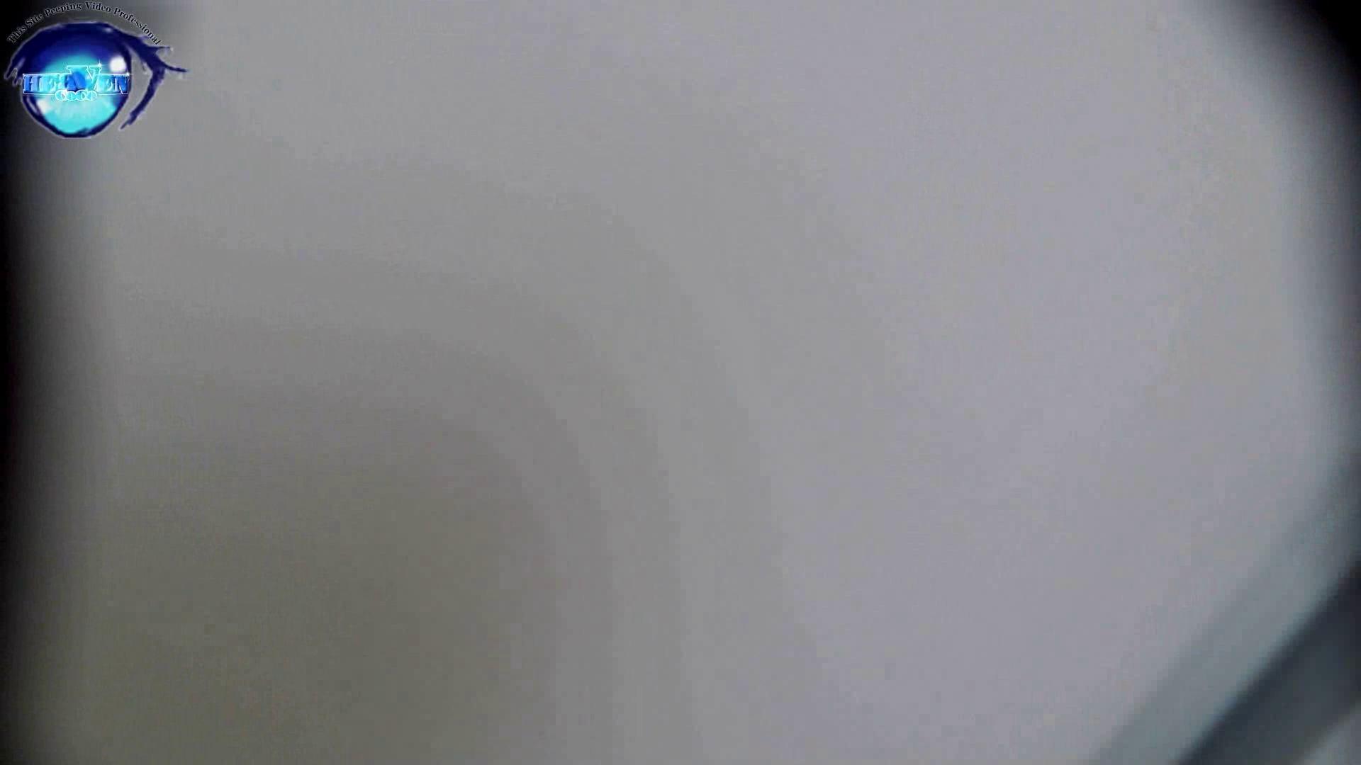 お銀さんの「洗面所突入レポート!!」 vol.52 高値更新!EUで育った日本人 後編 洗面所編   0  88PIX 1