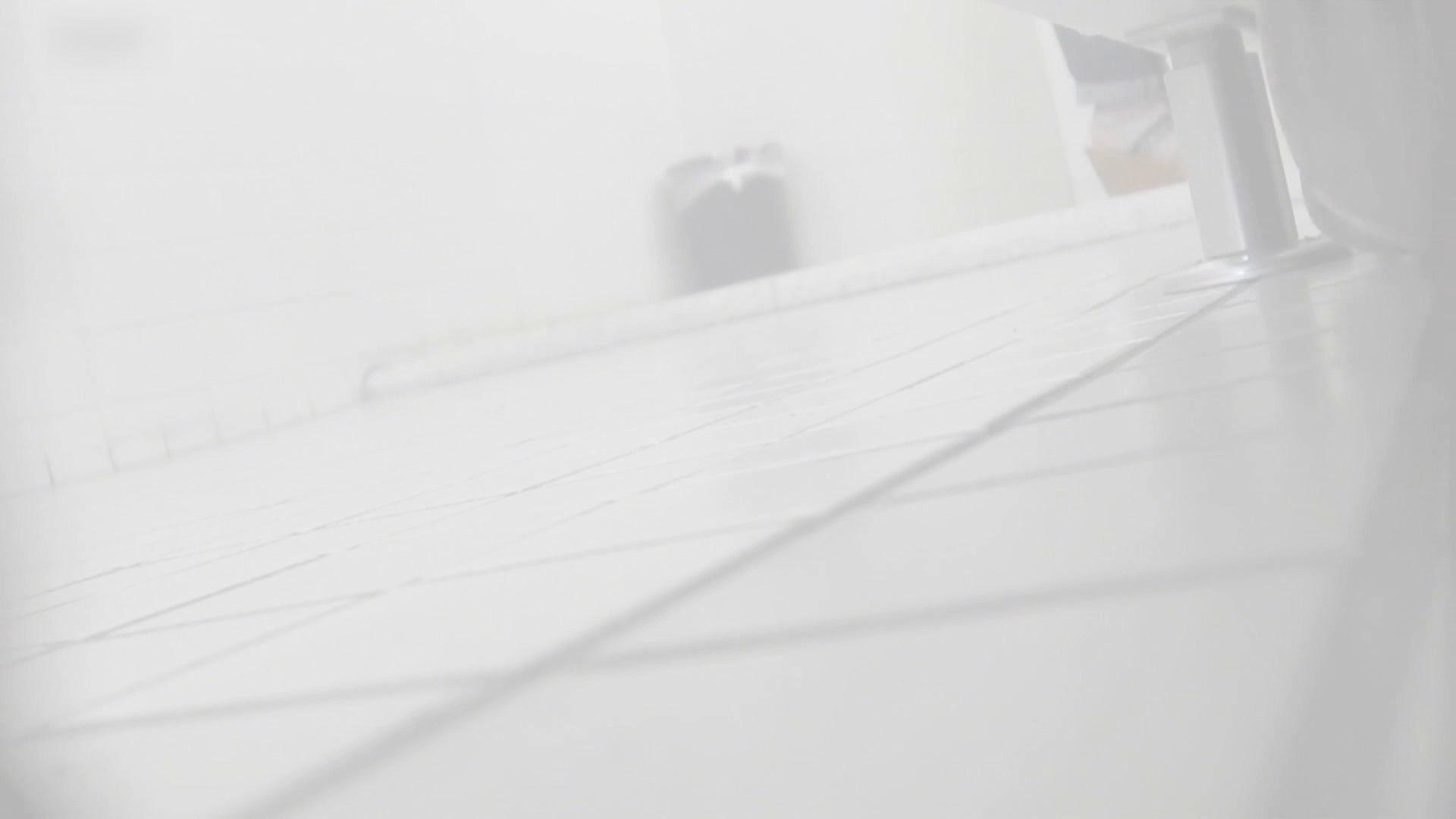 お銀さんの洗面所突入レポート!!vol.73 シリーズ一番エロい尻登場 洗面所編  75PIX 24