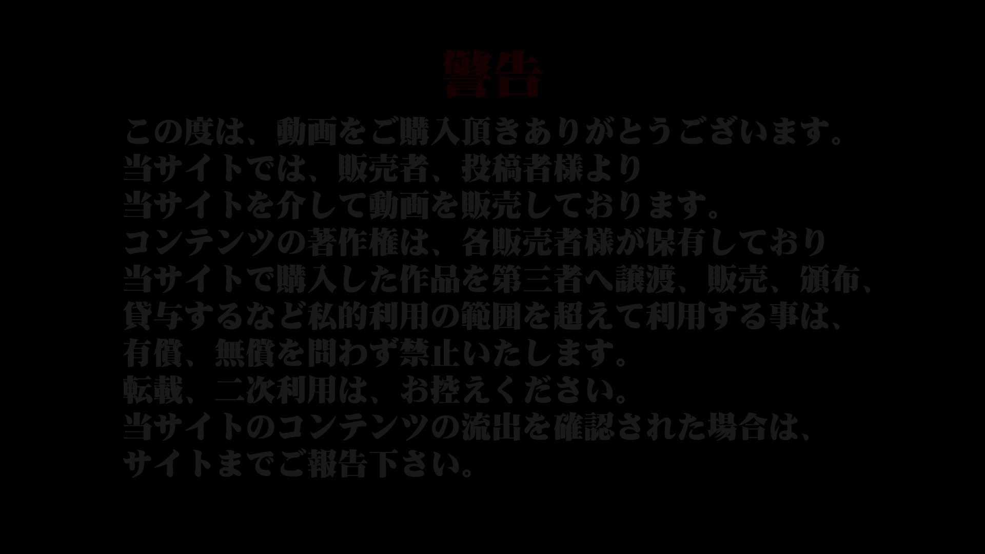 異業種交流会!!キャビンアテンダント編vol.45 トイレ | 下着 盗撮 75PIX 1