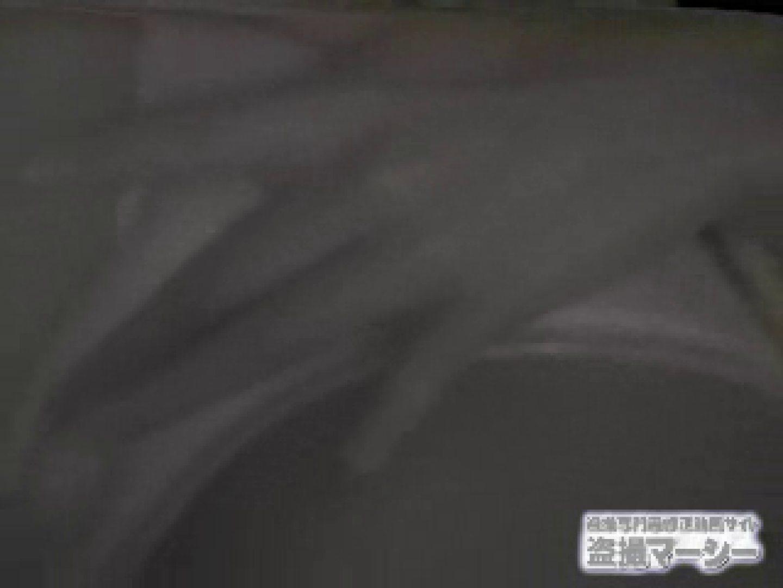 興奮状態vol.4 オナニーリサーチ編 ティーンギャル 盗み撮り動画 88PIX 48