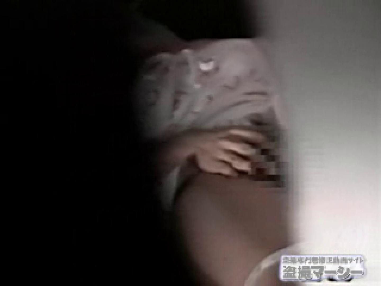 覗いてビックリvol.3 彼女の部屋編参 潜入 濡れ場動画紹介 102PIX 44