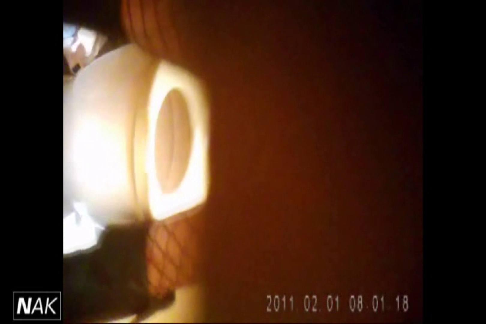 せん八さんの厠観察日記!2点監視カメラ 高画質5000K vol.01 お姉さんのエロ動画 | 高画質  110PIX 93