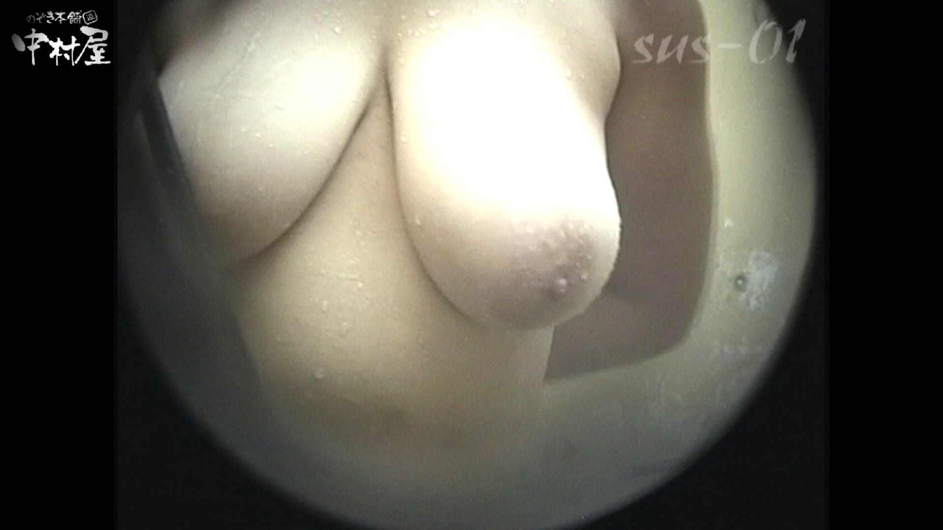 No.2 タレパイちゃんと美乳チャン。乳首の接写が中心。 お姉さんの乳首  81PIX 33