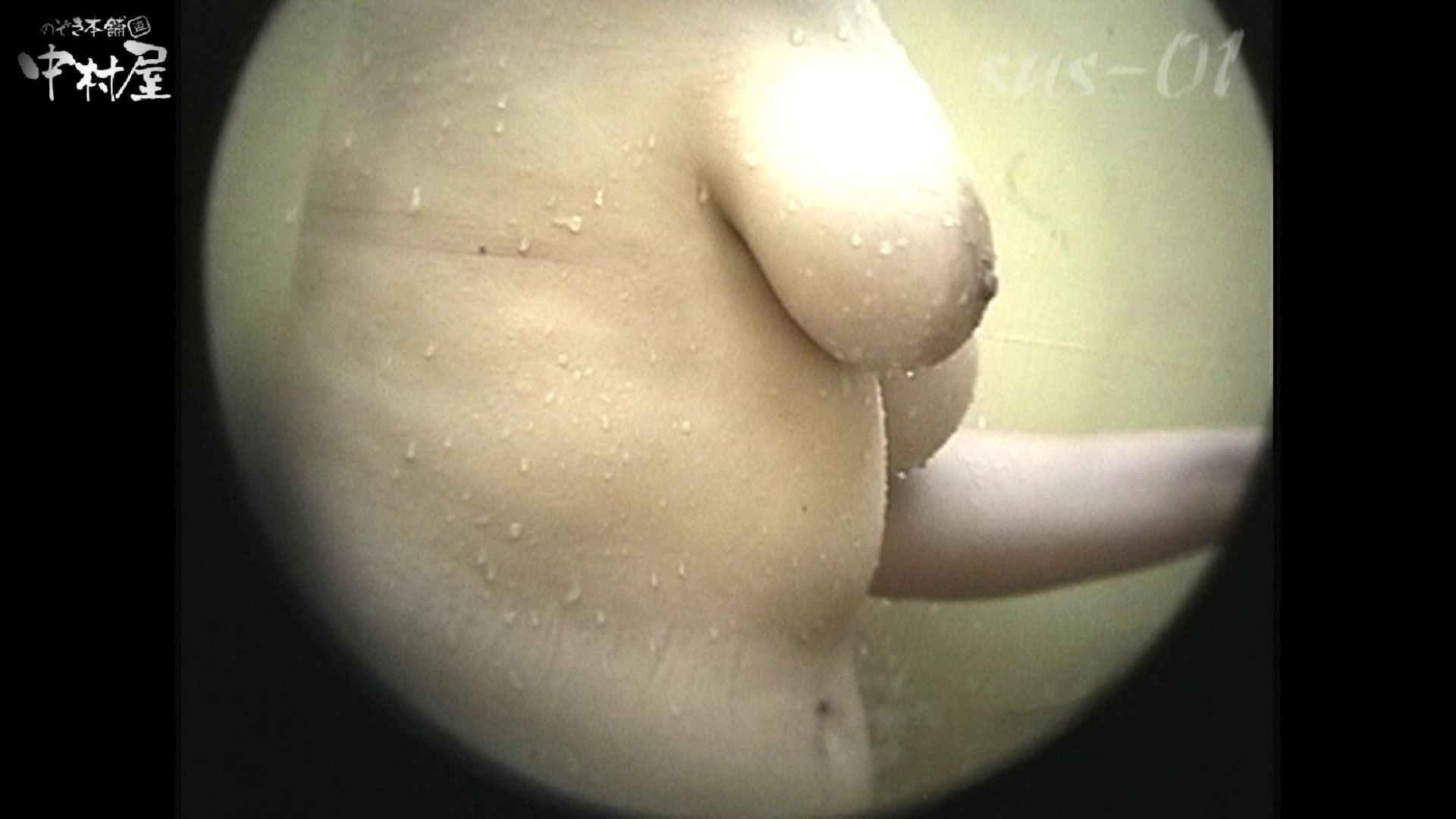 No.2 タレパイちゃんと美乳チャン。乳首の接写が中心。 お姉さんの乳首 | 美乳  81PIX 34