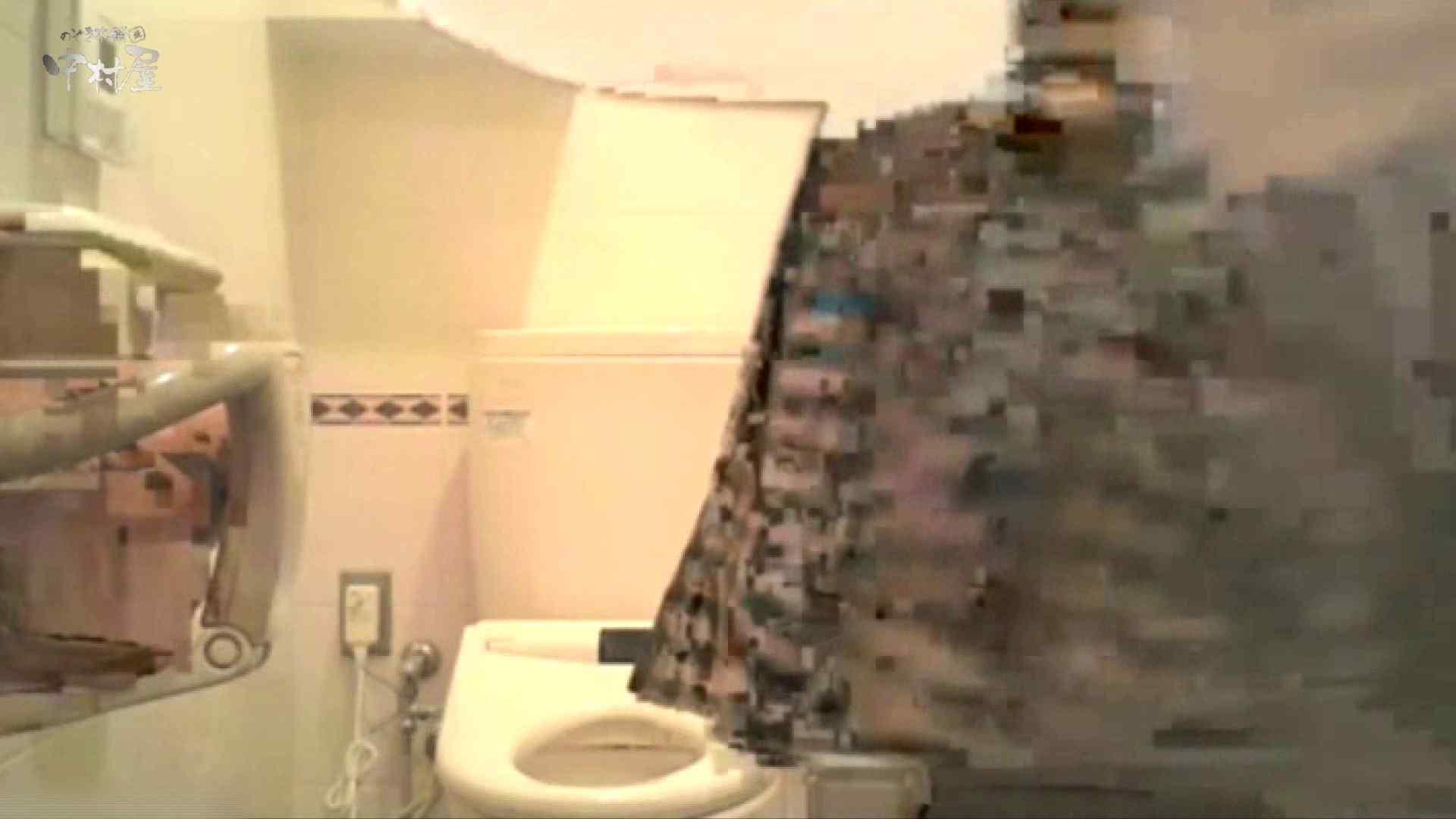 ティーンガールのトイレ覗き‼vol.10 トイレ スケベ動画紹介 94PIX 57
