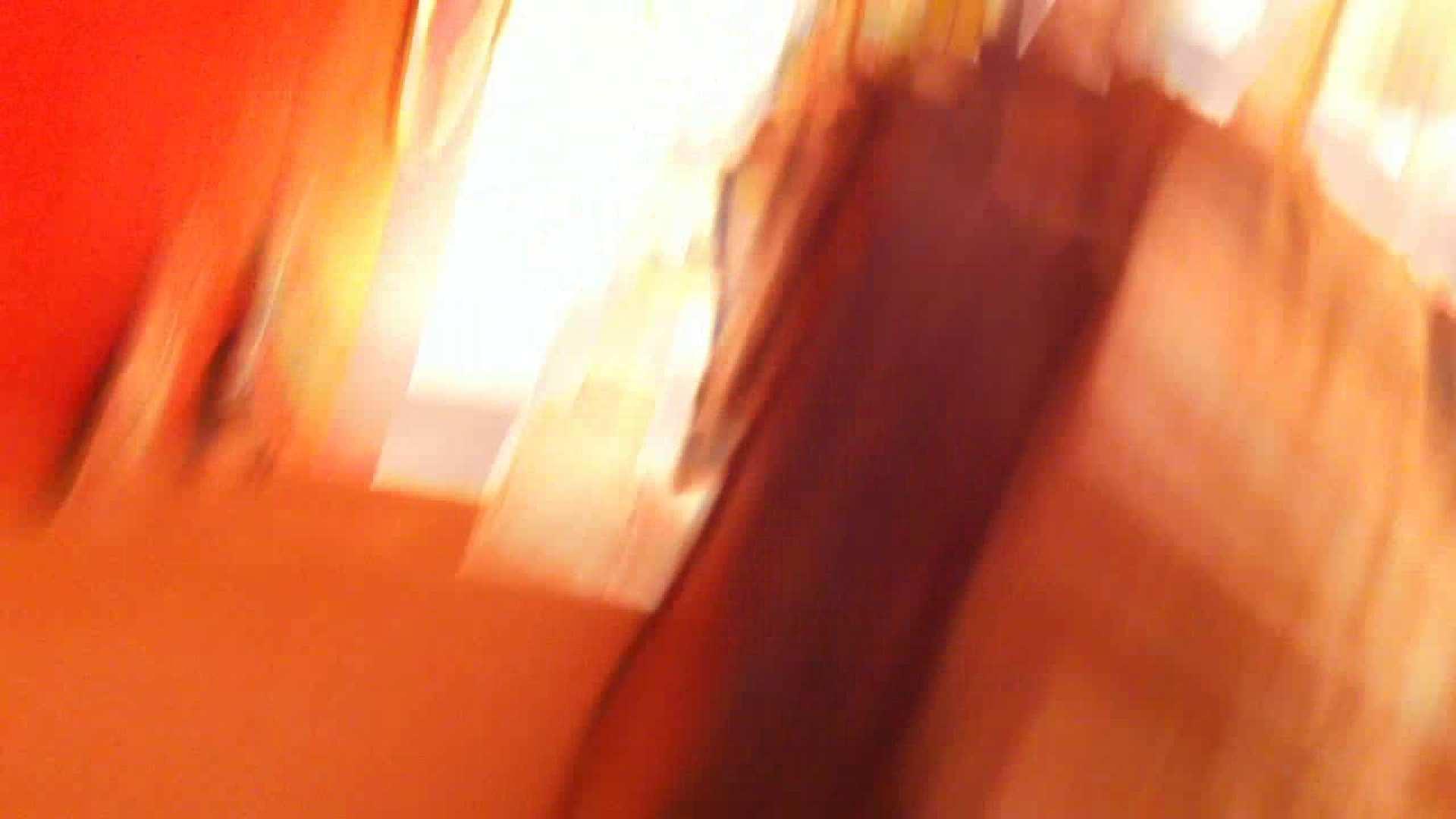 フルHD ショップ店員千人斬り! 大画面ノーカット完全版 vol.29 チラ のぞき動画キャプチャ 88PIX 38