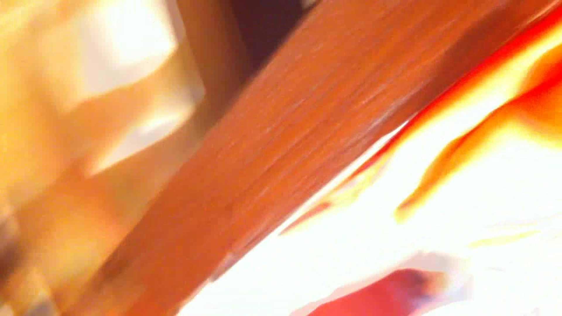 フルHD ショップ店員千人斬り! 大画面ノーカット完全版 vol.37 胸チラ おまんこ無修正動画無料 79PIX 74