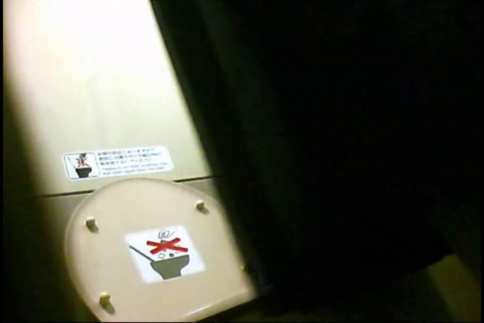 新幹線厠3 盗撮シリーズ  113PIX 30