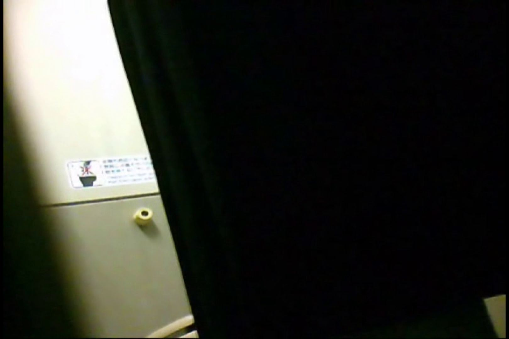 新幹線厠3 盗撮シリーズ  113PIX 32