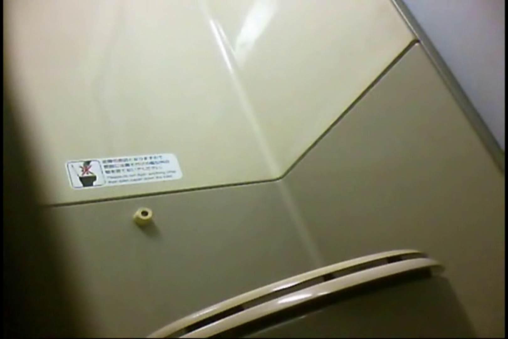 新幹線厠3 盗撮シリーズ  113PIX 48