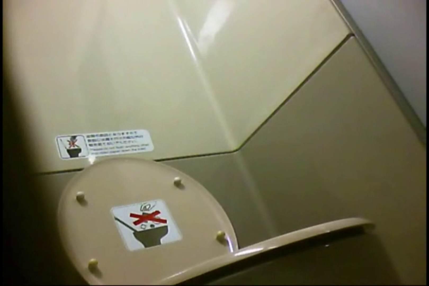 新幹線厠3 盗撮シリーズ  113PIX 62