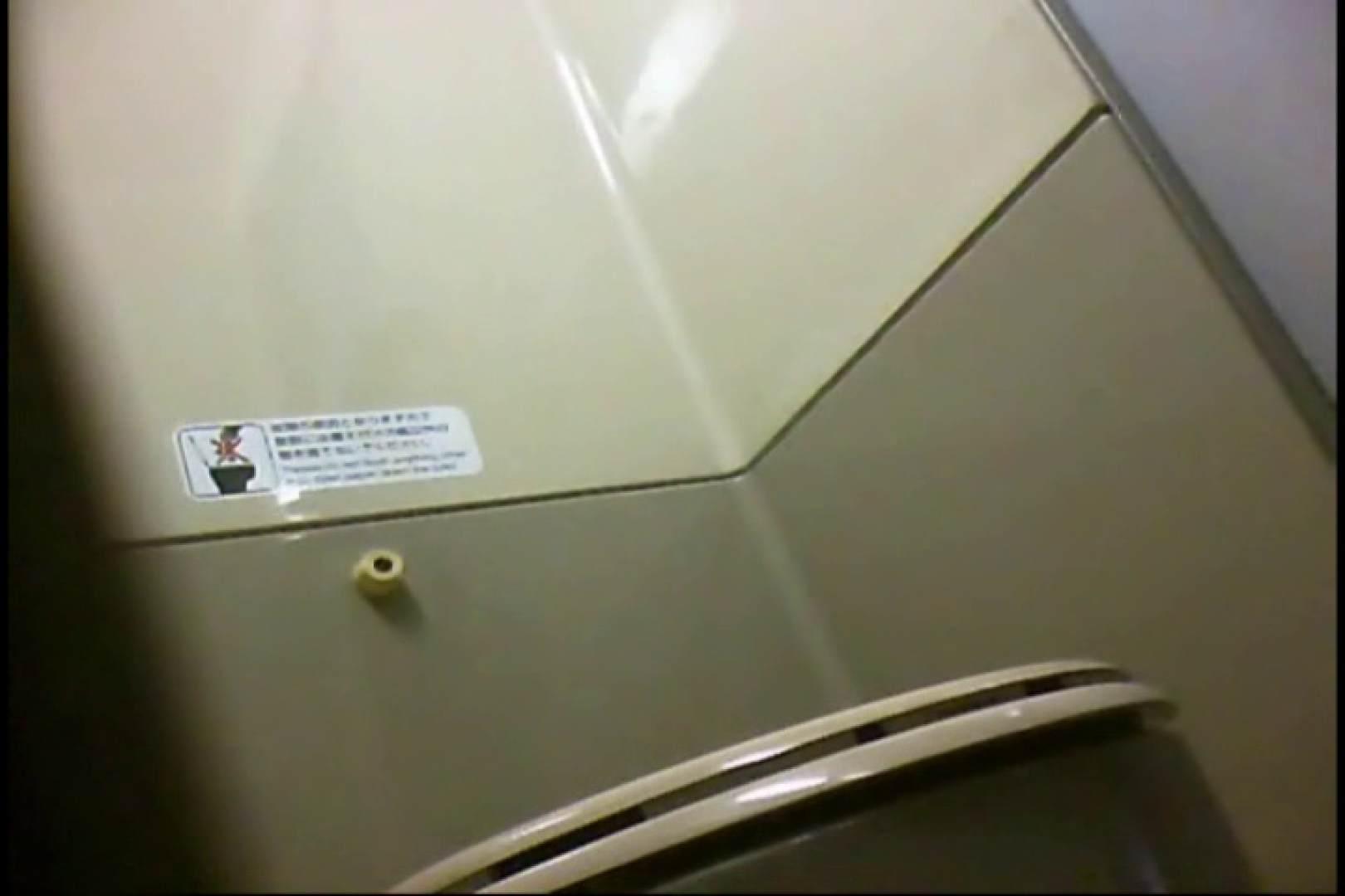 新幹線厠3 盗撮シリーズ   厠・・・  113PIX 81