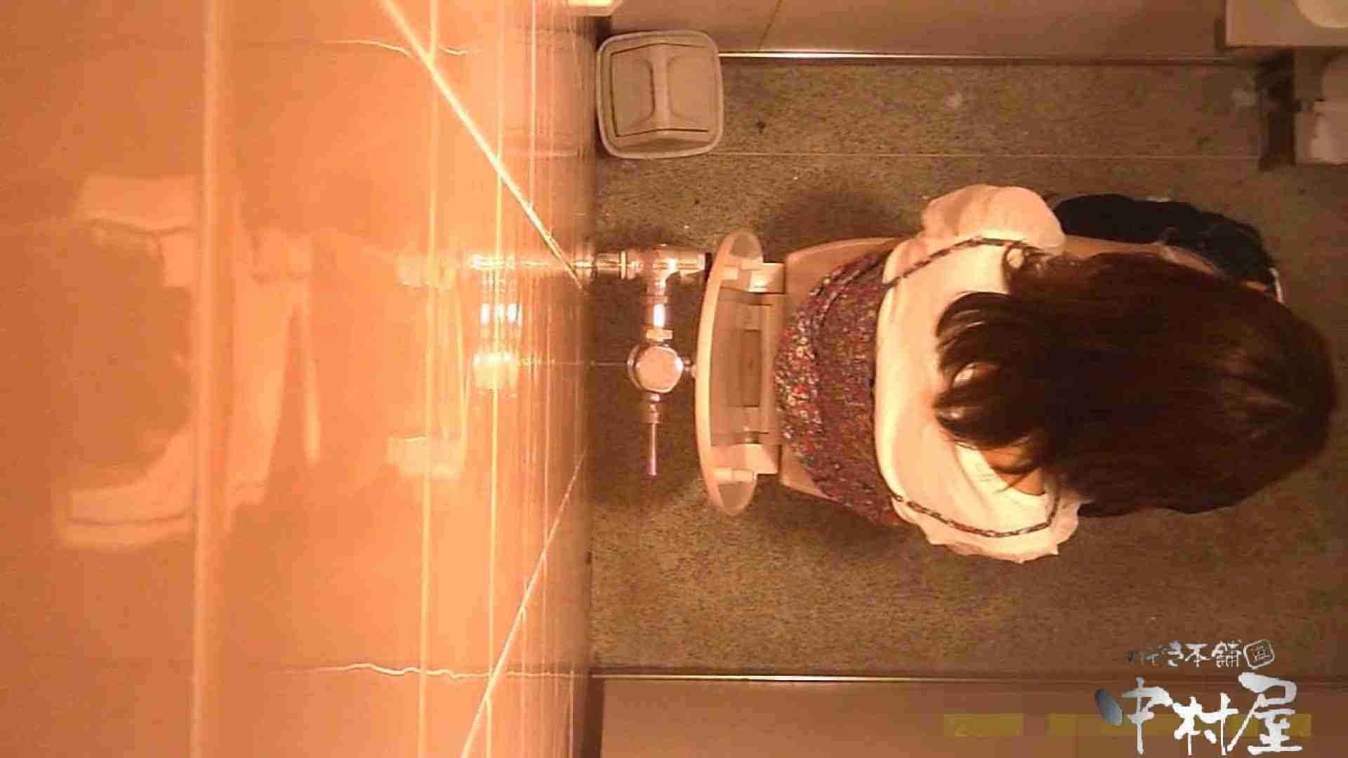 初盗撮!女盗撮師カレンさんの 潜入!女子トイレ盗撮!Vol.2 美女まとめ  101PIX 35