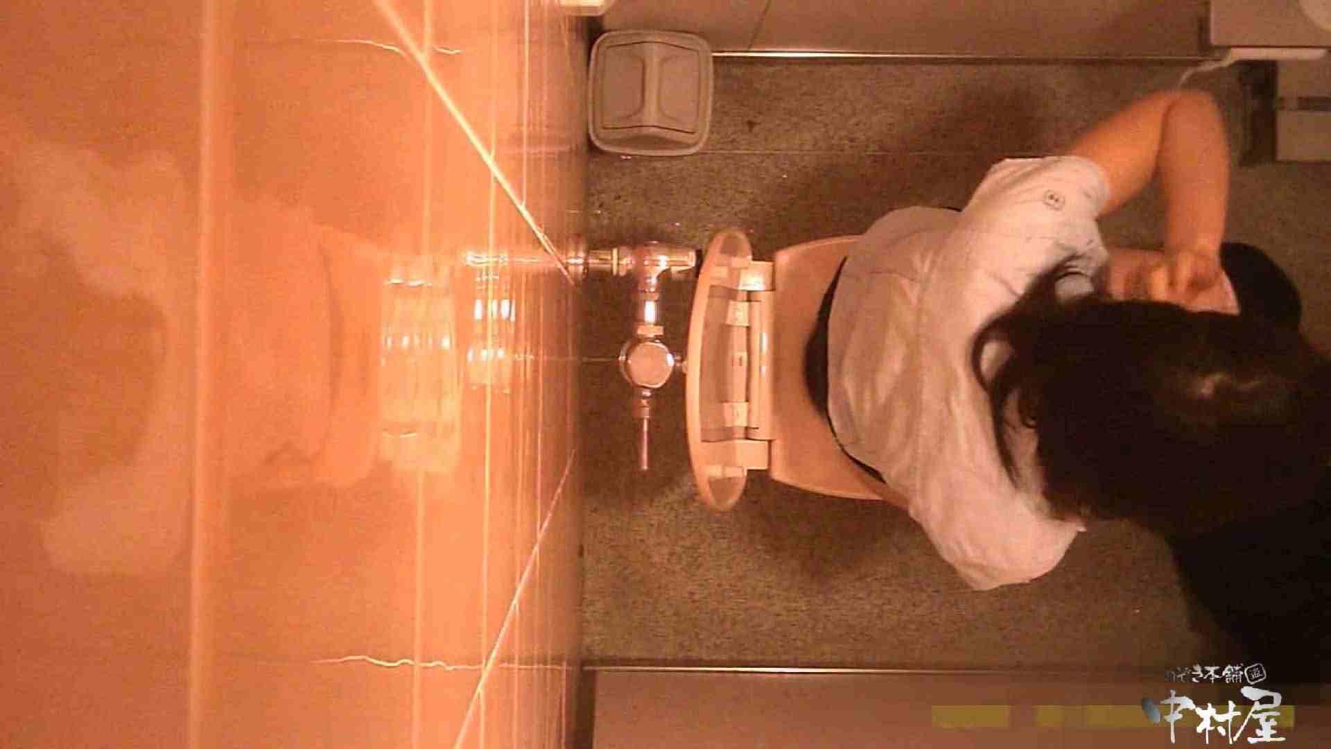 初盗撮!女盗撮師カレンさんの 潜入!女子トイレ盗撮!Vol.3 女子トイレ編 盗み撮り動画 84PIX 9