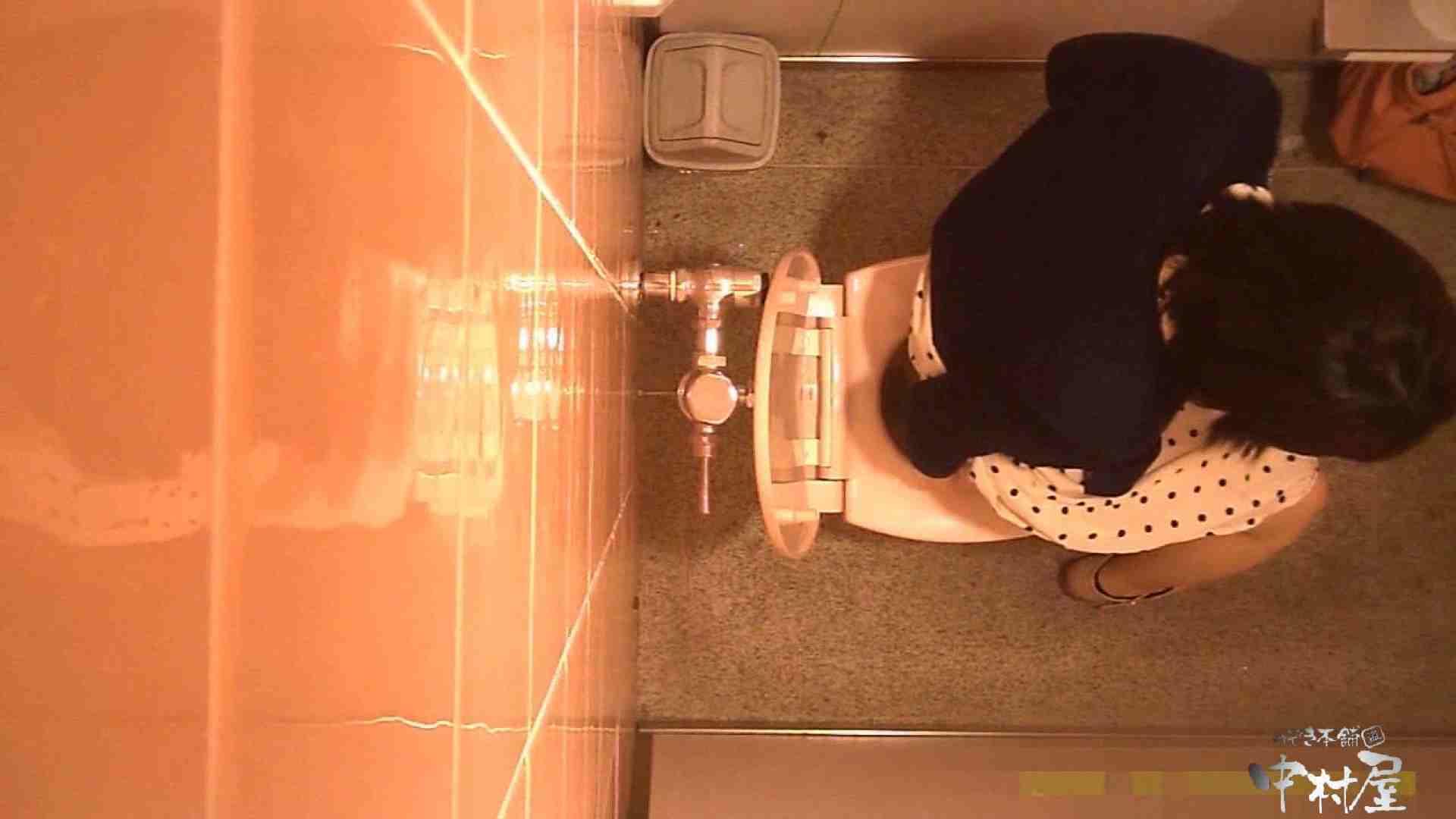 初盗撮!女盗撮師カレンさんの 潜入!女子トイレ盗撮!Vol.3 美女まとめ エロ無料画像 84PIX 18