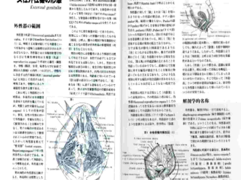 日本女性の外性器① 性器丸見え  80PIX 3