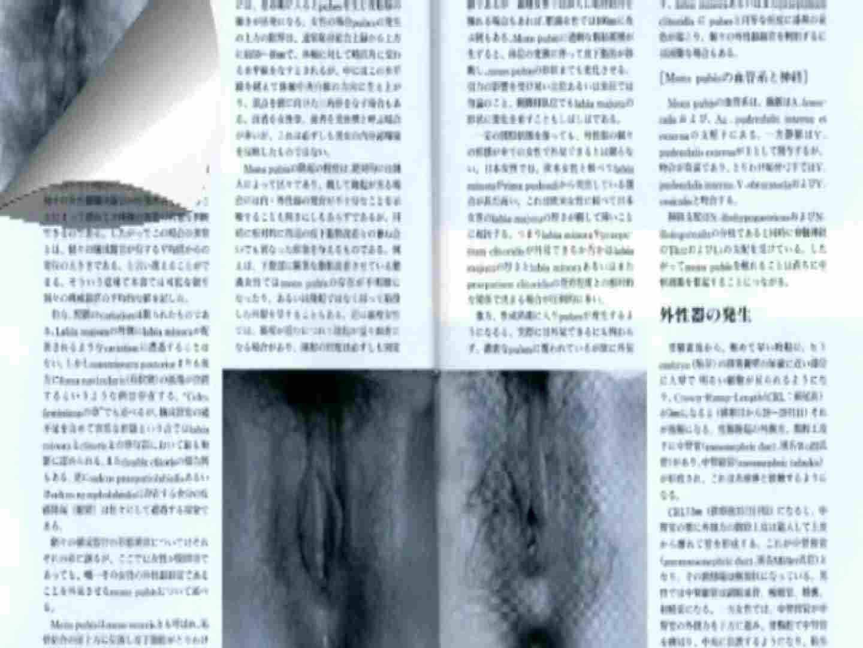 日本女性の外性器① 性器丸見え  80PIX 30