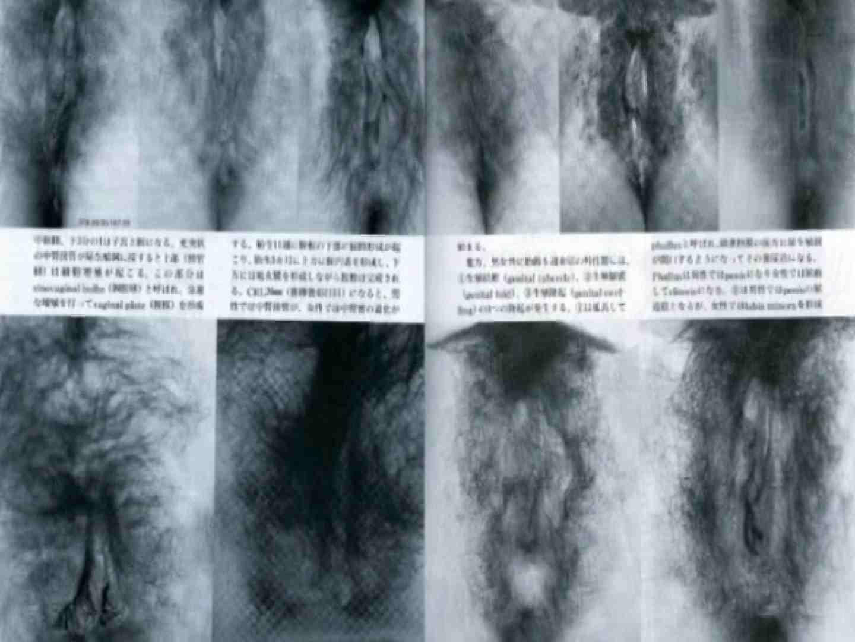 日本女性の外性器① 性器丸見え | セクシーガール  80PIX 31