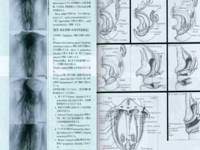 日本女性の外性器① 性器丸見え  80PIX 33