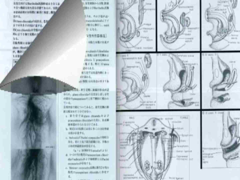日本女性の外性器① 人気作 オメコ動画キャプチャ 80PIX 35