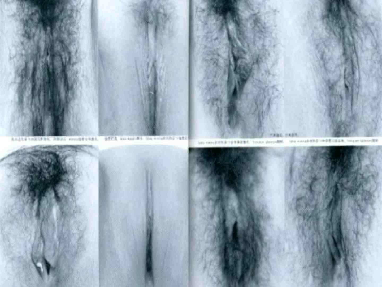 日本女性の外性器① 性器丸見え  80PIX 39