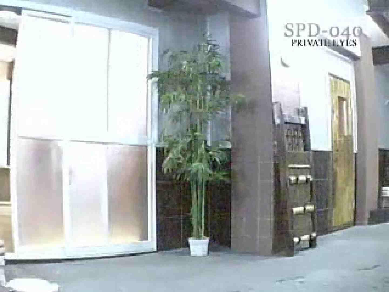 ガラスの館 Vol.2 spd-040 盗撮シリーズ セックス無修正動画無料 106PIX 24