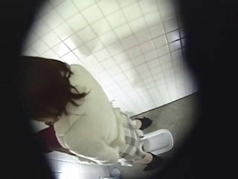 緊急放尿!! 都内某公園潜入盗撮 排泄編 オメコ動画キャプチャ 93PIX 40