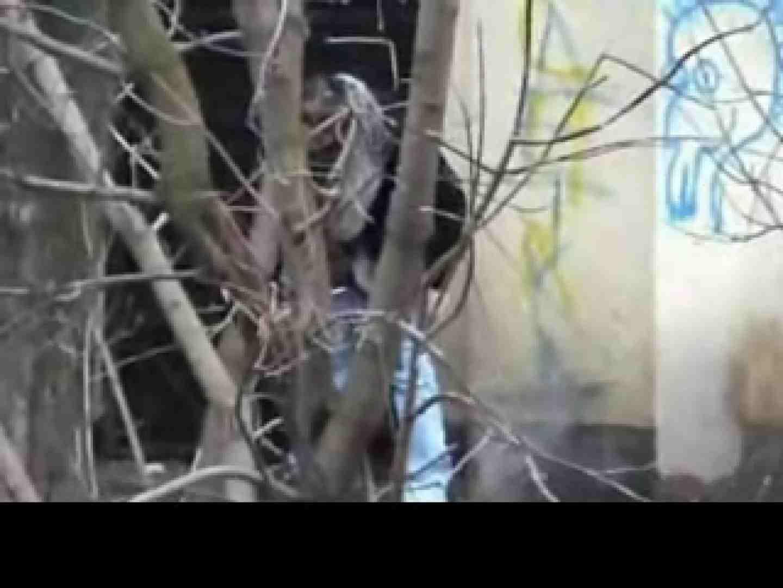 白人さんの野外排泄のぞきvol.3 排泄編 ワレメ動画紹介 101PIX 29