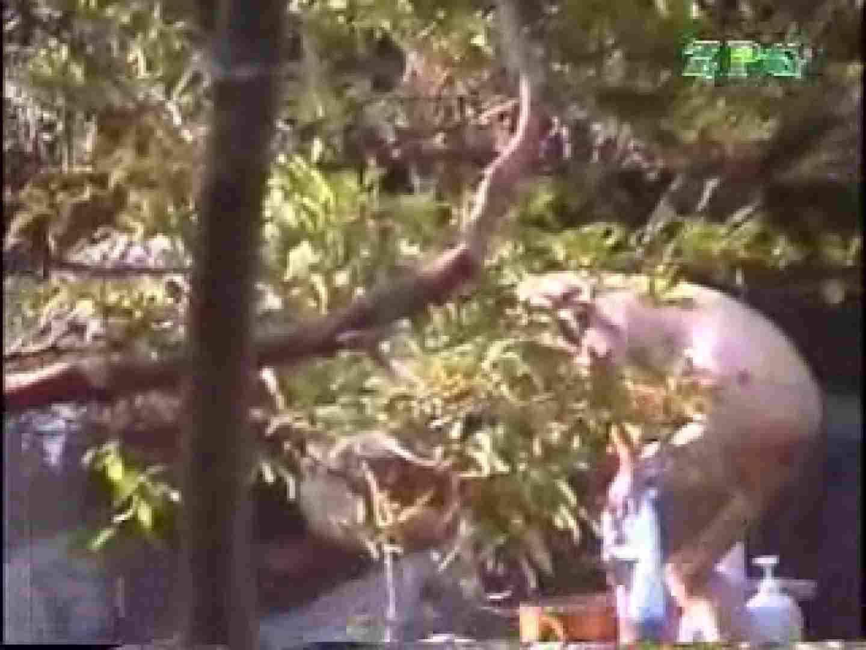 森林浴場飽色絵巻 ギャルのエロ動画 | ティーンギャル  100PIX 3