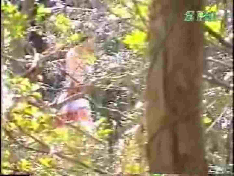 森林浴場飽色絵巻 ギャルのエロ動画 | ティーンギャル  100PIX 31