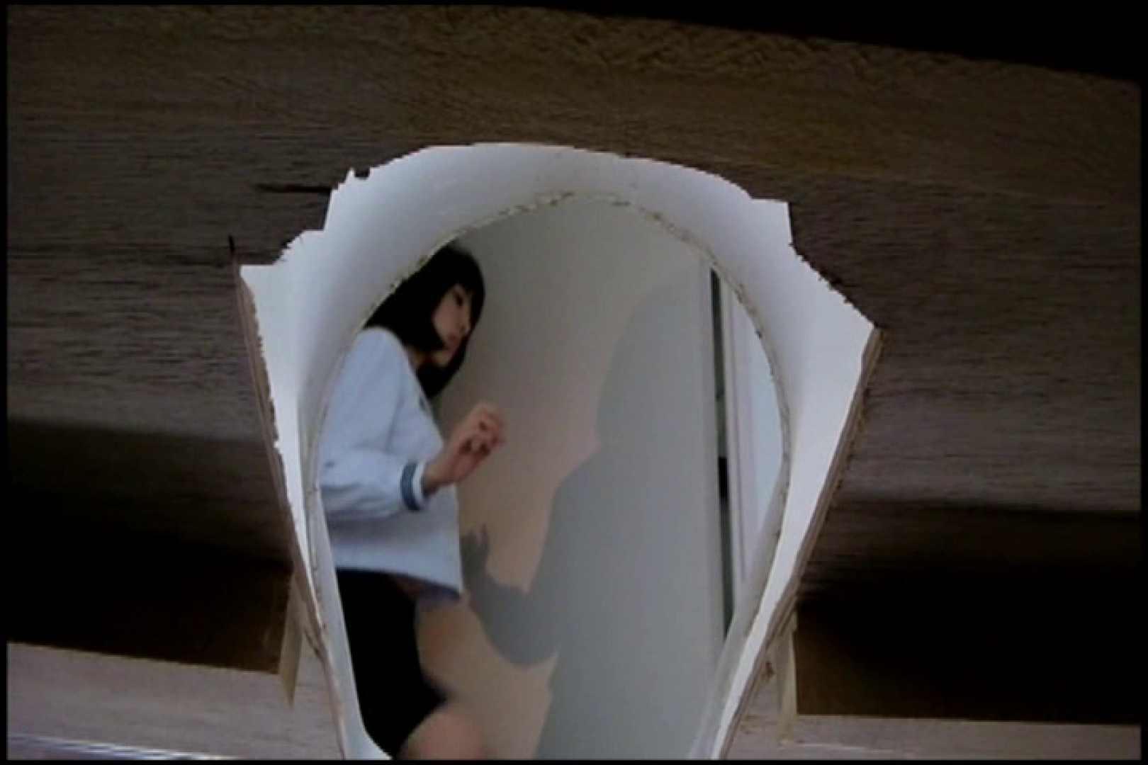 和式にまたがる女たちを待ちうけるカメラの衝撃映像vol.04 厠・・・ オメコ動画キャプチャ 84PIX 58