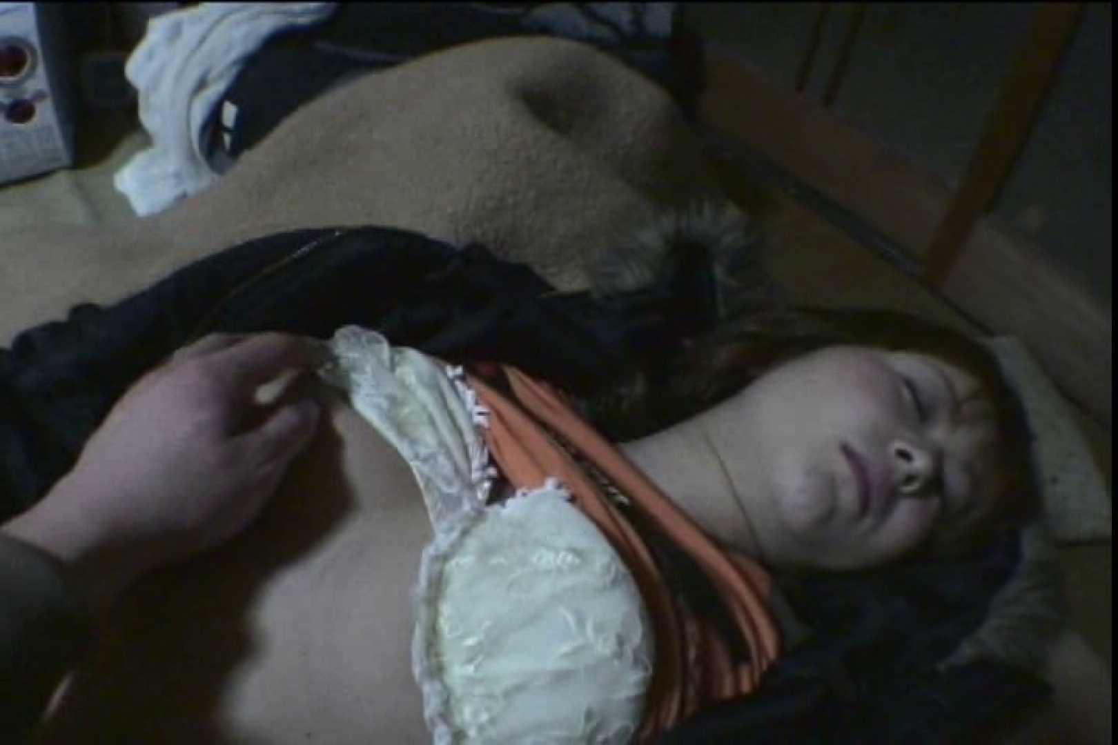Sex in the dream!眠れる泥酔女3 巨乳編 | SEXで興奮  100PIX 39