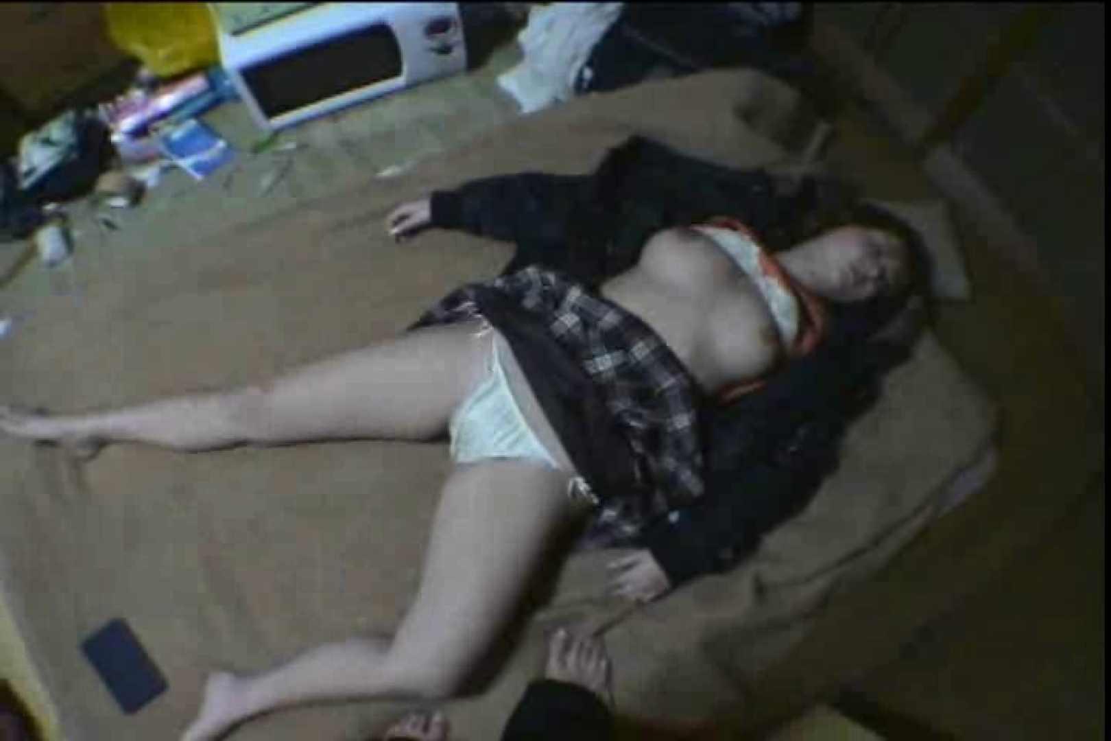 Sex in the dream!眠れる泥酔女3 巨乳編 | SEXで興奮  100PIX 57